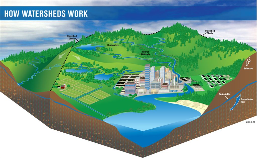 Blueprint for Watershed Collaboration - Purpose of Watershed ...